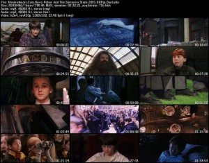 دانلود دوبله فارسی فیلم Harry Potter and the Sorcerers Stone 2001   تاپ 2 دانلود
