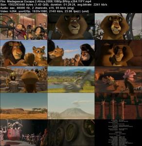 دانلود دوبله فارسی انیمیشن Madagascar 2: Escape 2 Africa | تاپ 2 دانلود