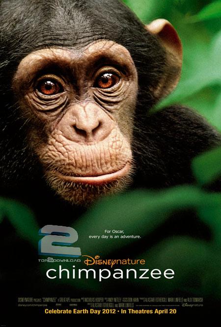 Chimpanzee   تاپ 2 دانلود