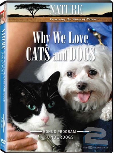 Why We Love Cats and Dogs | تاپ 2 دانلود