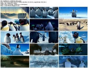 دانلود دوبله فارسی انیمیشن Happy Feet | تاپ 2 دانلود