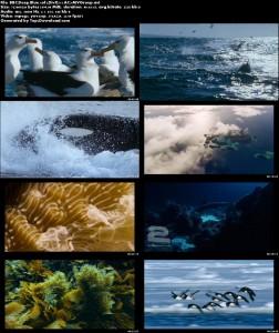 BBC-Deep-Blue-Screen