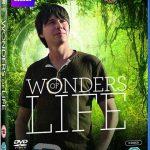 دانلود مستند شگفتی های حیات BBC – Wonders of Life 2013