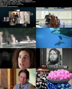 Blackfish | تاپ 2 دانلود