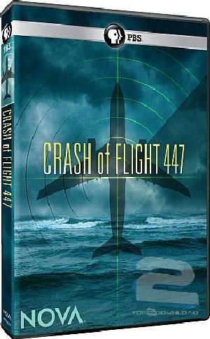 Crash of Flight 447 | تاپ 2 دانلود