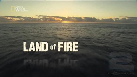Wild Hawaii: Land Of Fire | تاپ 2 دانلود