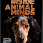 دانلود مستند PBS – Inside Animal Minds: Dogs & Super Senses 2014