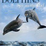 دانلود مستند دلفین ها BBC – Dolphins: Spy in the Pod 2014