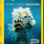 دانلود مستند National Geographic – Secret Life of Predators 2013