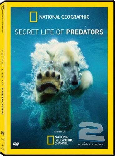 Secret Life of Predators | تاپ 2 دانلود
