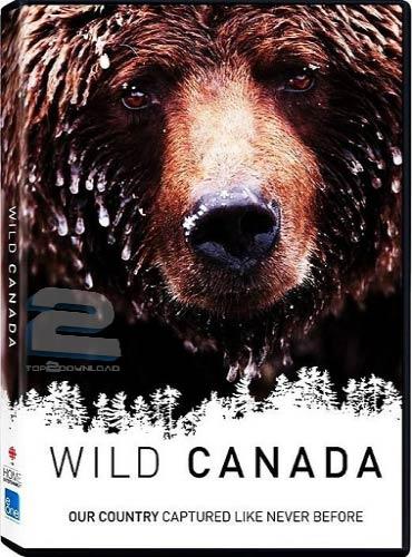 CBC - Wild Canada 2014   تاپ 2 دانلود