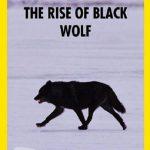 دانلود مستند National Geographic – The Rise of Black Wolf 2011