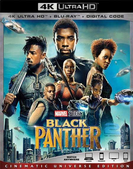 Black Panther 2018 | تاپ 2 دانلود